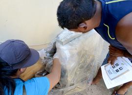 Saúde remove criadouros e orienta moradores do Fernanda sobre dengue