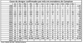 Campinas divulga novo balanço de casos de dengue, com números de fevereiro