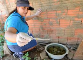 Serviços Públicos leva megaoperação contra Dengue ao Jardim Bassoli