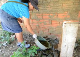 Administração realiza megaoperação contra a dengue na região Sul