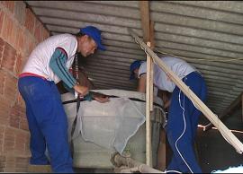 Trabalho integrado intersetorial reforça ofensiva contra dengue