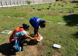 Mutirão contra o mosquito Aedes aegypti chega ao Cemitério dos Amarais